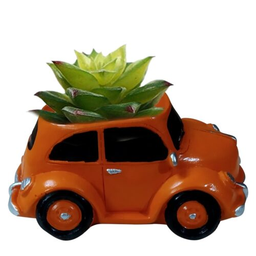 Car-with-plant